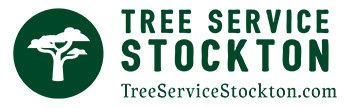 Stockton Tree Services | Certified Arborists