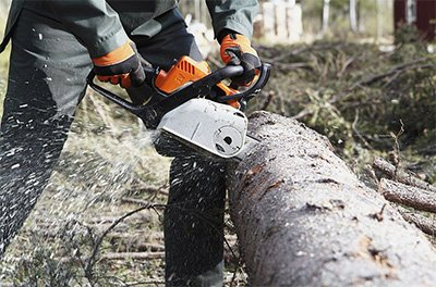 What Are Tree Removal Services